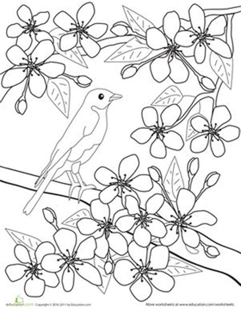 coloring pages japanese flowers 25 best education japanese colouring pages images on