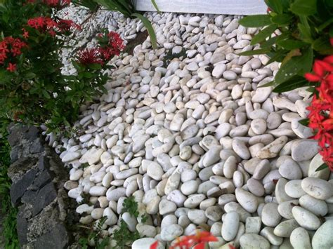 amazing white rocks for landscaping bistrodre porch and