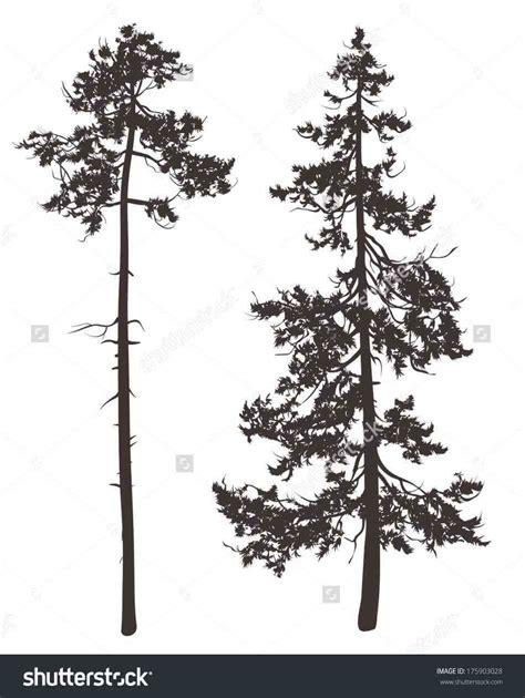 pine tree silhouette tattoo ponderosa pine tree drawing drawing refrences