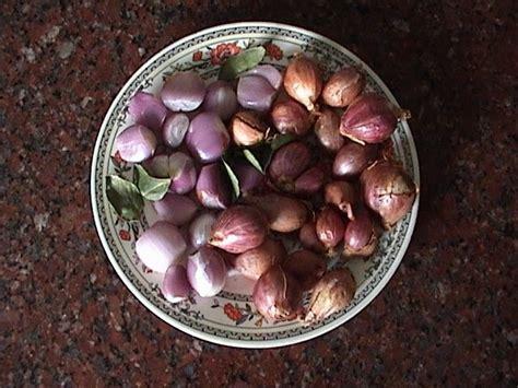 onion link kids onion link kids chitra amma s kitchen chinna vengaya
