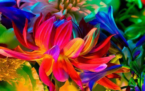 flower wallpaper for macbook pro itt vannak az 250 j macbook pro h 225 tt 233 rk 233 pei szifon com