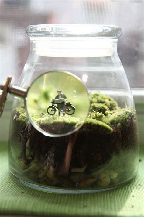 Handmade Terrariums - terrarium how tos and ideas handmadeology