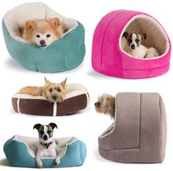 Puppy Beds For Small Dogs Cute Pet Small Breed Dogs Dog Breeds Picture