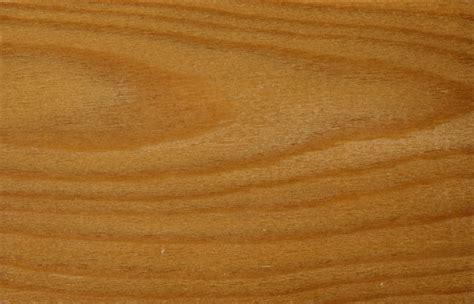 European larch wood grain texture   Image 16020 on CadNav