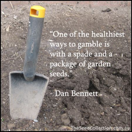 garten zitate gardening quotes image quotes at hippoquotes
