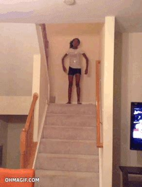 falling stairs we re giving you animals what you want 22 gifs of falling