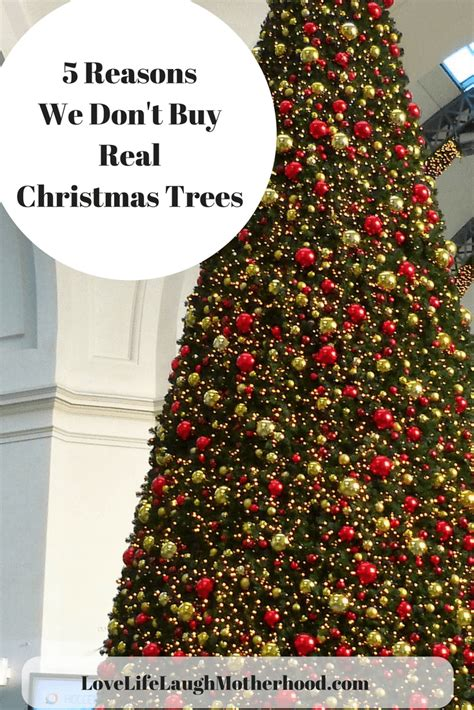 reason for christmas trees 5 reasons we don t buy real trees for our home