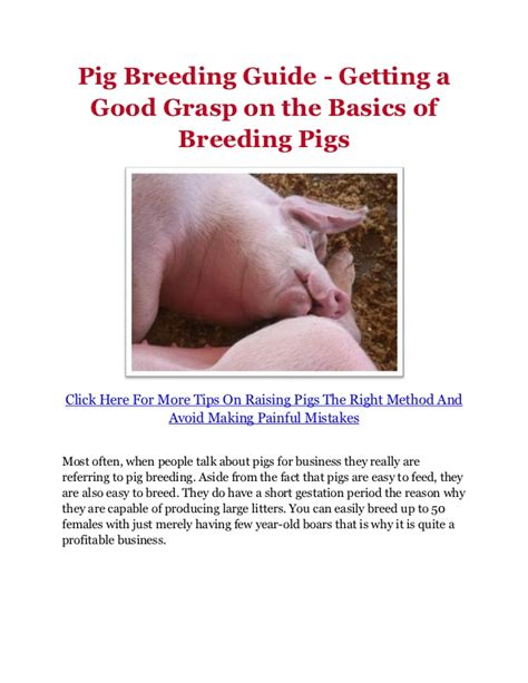 receiving them well a guide on how to support your loved one returning from humanitarian aid or work books pig guide getting a grasp on the basics of