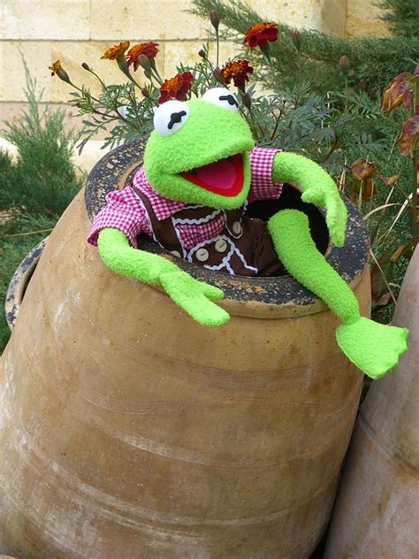 photo kermit frog green barrel ton  image