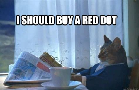 I Should Buy A Boat Meme - i should buy a red dot sophisticated cat quickmeme
