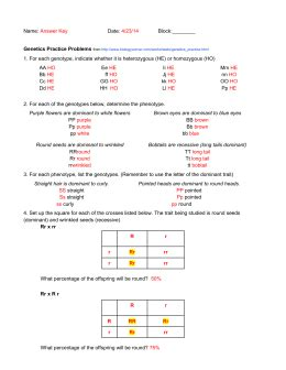 Genetics Worksheet Answer Key