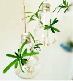 2 pcs set air plant bulb terrarium hanging bulb shape