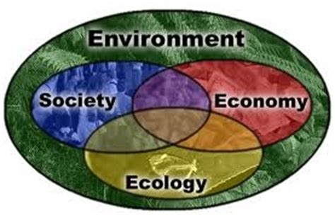 Landscape Definition Ecology Geography And Environment Environmental Geography