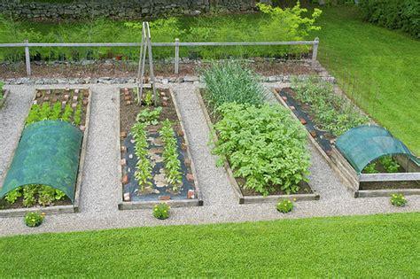 Organic Pest Control Two Effective Techniques Best Killer For Vegetable Gardens