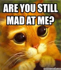 You Still Mad Meme - still mad you are quotes quotesgram