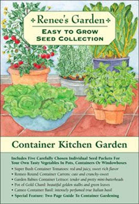 container gardening seeds 1000 images about gardening on gardening for
