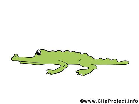clipart co krokodil clipart cliparts co