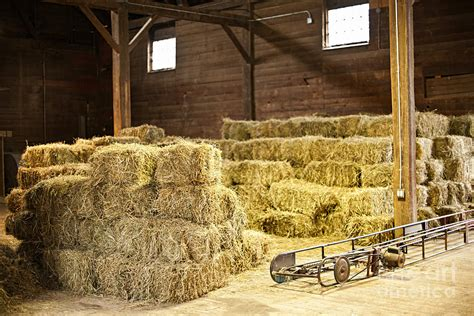 Interior Design Apps For Iphone Barn With Hay Bales Photograph By Elena Elisseeva