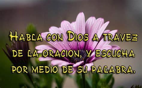 imagenes de frases bonitas cristianas imagenes de flores con frases