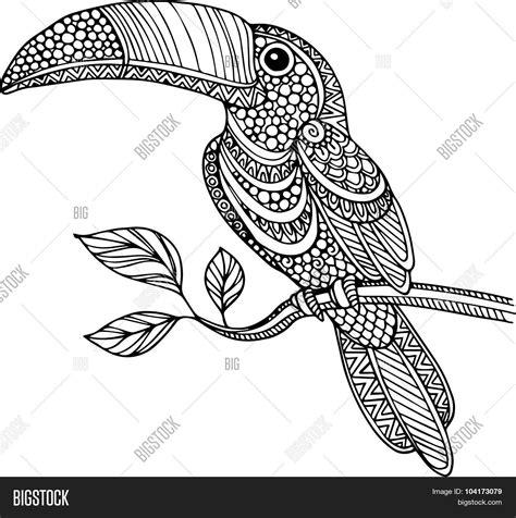 doodle 4 outline doodle outline toucan vector photo bigstock