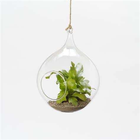hanging glass feeder round terrain