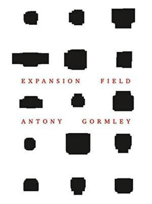 expansion field antony gormley william stout