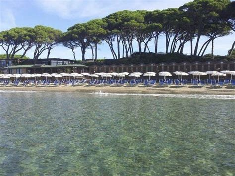 Bagno Pineta Follonica by Kitesurf Il Boschetto Follonica Picture Of Hotel