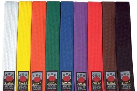 belt colors in karate this is what the different colors of karate belts actually