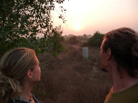 ziegen beim decken indien reisebericht quot bilder vom norden quot