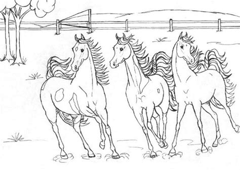 herd of horses coloring pages pferde ausmalbilder gratis 27 ausmalbilder gratis