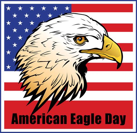 american in american eagle day wallpapers hd