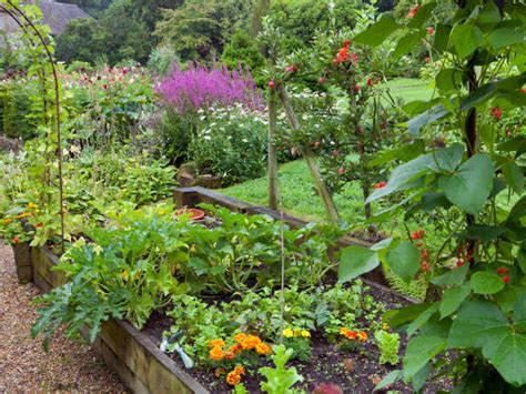 Garden Plot Ideas 25 Simple Backyard Landscaping Ideas Interior Design