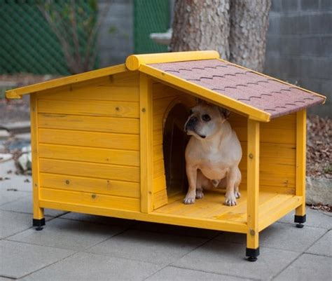 insulated outdoor dog houses how to choose the insulated outdoor dog houses pets is my world