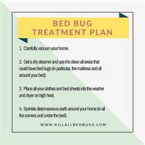 how to kill bed bugs 10 effective methods kill all bed