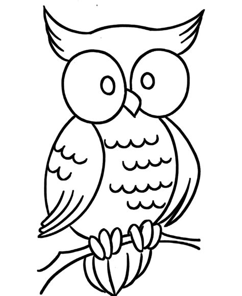 Owl Coloring Pages Printable owl coloring pages free printable pictures coloring