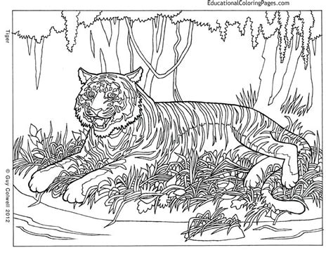 Cool Animal Coloring Pages cool designs coloring pages az coloring pages