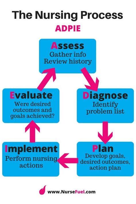 the parish school its aims procedure and problems classic reprint books 25 best ideas about nursing process on