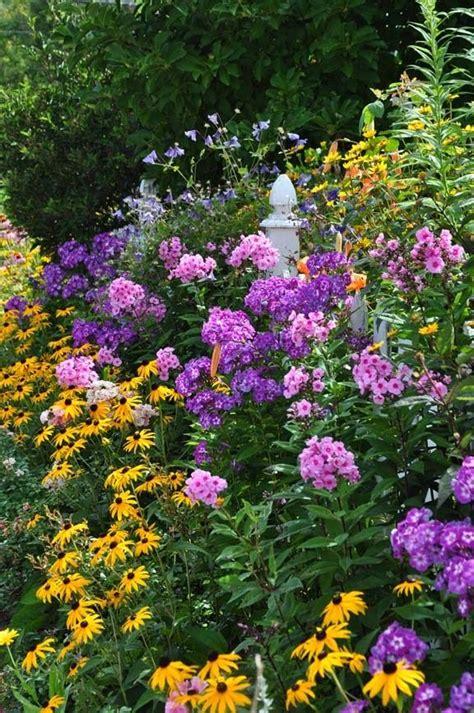 Garden Flowers Perennials Perennial Garden Late Summer Garden Phlox Paniuculata Quot Quot Cullum Quot Yellow Rudbeckia