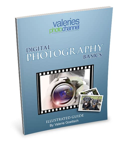 Intermediate Guide To Digital Photography digital photography basics free guide for beginners