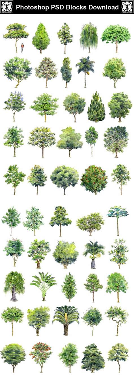 photoshop pattern landscape 25 best ideas about landscape drawings on pinterest