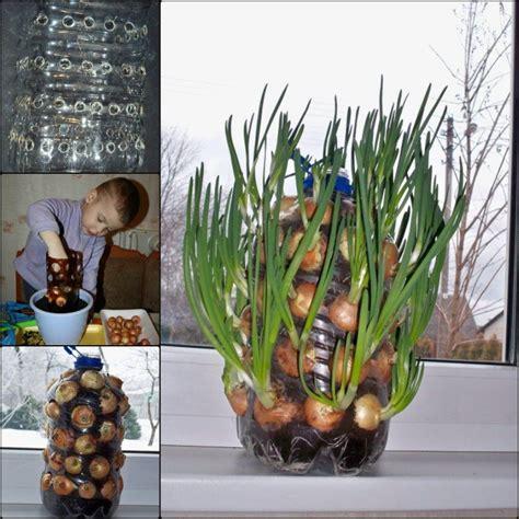 diy vertical onion tower planter   plastic bottle