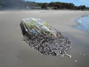 japan tsunami fishing boat more tsunami debris this time on the washington coast