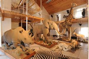 Safari Themed Bedroom trophy room bankfontein peter flack hunter writer