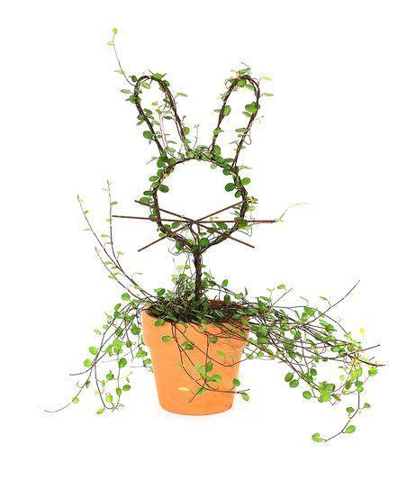 vine topiary rabbit vine topiary wish list products