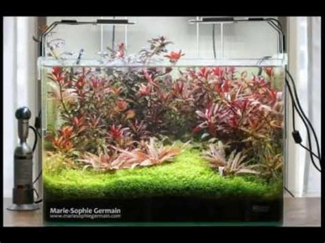 Aquascape Designs Products by Style Aquascape 2015