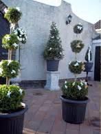 wedding arch northern ireland hollyhill trees ballygowan bespoke wedding tress