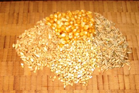 whole grains contain diabetes the importance of physical activity and