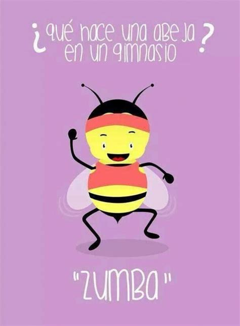 imagenes memes de zumba 191 qu 233 hace una abeja en un gimnasio