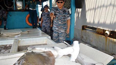 Jaring Ikan Kecil kapal berbendera malaysia jaring ikan kecil hingga hiu di perairan ambalat tribunnews