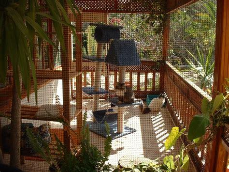 diy cat enclosures on pinterest cat enclosure outdoor